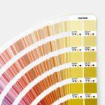 GP5101 - CMYK Color Guide Set   PANTONE
